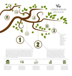 Stylish infographics with a tree for a specific vector