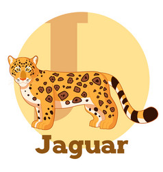 abc cartoon jaguar vector image