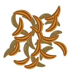 Cloves icon cartoon style vector