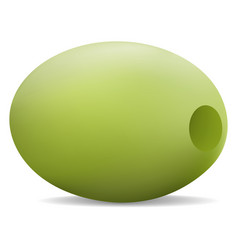 eco green olive icon realistic style vector image
