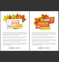 limited time only buy now discount promo coupons vector image