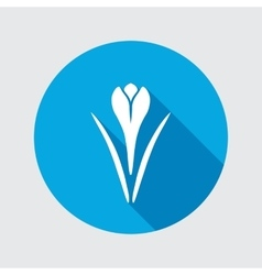 Spring flower icon Crocus Saffron herbs Floral vector image