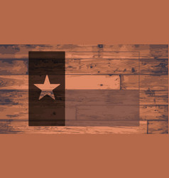 Texas state flag brand vector