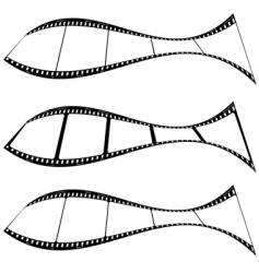 photo film strip fish vector image