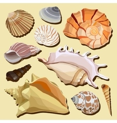 Set of isolated hand drawn seashell icons vector image