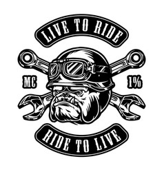 angry animal motorcyclist vintage emblem vector image
