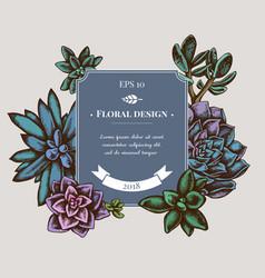 Badge design with colored succulent echeveria vector