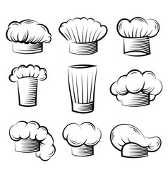 Chef hat cook professional clothes for preparing vector