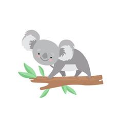 cute koala bear climbing on tree branch lovely vector image