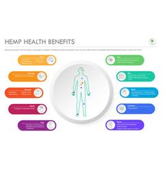hemp health benefits horizontal business vector image