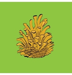 Christmas-tree pine cone vector image