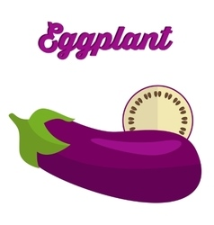 Eggplant - whole and cut vector image vector image