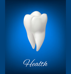 3d white tooth for dental care design vector image vector image