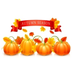 Pumpkins and Autumn Leaves vector image vector image