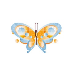 beautiful butterfly with blue and orange wings vector image