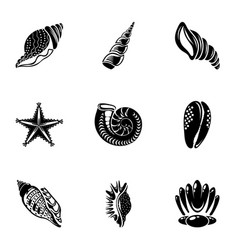 Conch icons set simple style vector