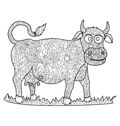 Cow coloring for adults vector