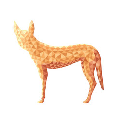 design of dingo dog in low poly style vector image