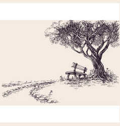 park sketch a wooden bench under the tree vector image vector image