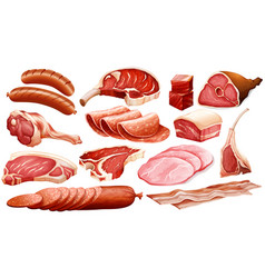 different types of meat products vector image vector image