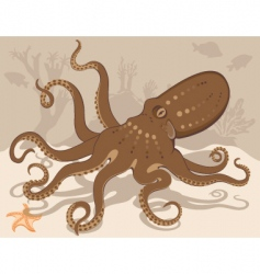 octopus on coral reef vector image vector image