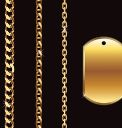 gold chain vector image
