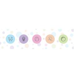 5 balloon icons vector