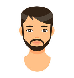 Avatar young bearded guy brow-haired man vector