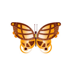 original flat icon of wonderful butterfly vector image