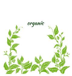 template organic green 2 vector image