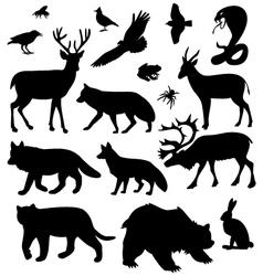 Wild animals pictures vector