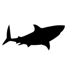 black silhouette shark giant apex predator cartoon vector image