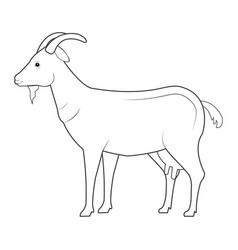 Goat animal farm icon vector