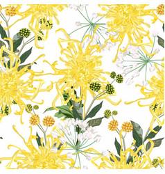 seamless pattern chrysanthemums flowers vector image
