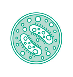 study of bacteria icon vector image