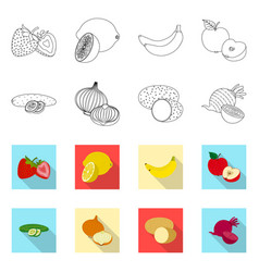 Vegetable and fruit icon vector