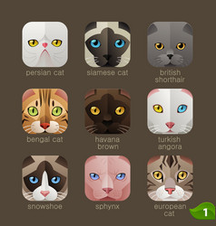 animal faces for app icons-cats set vector image vector image