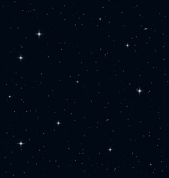Seamless Realistic Night Sky vector image