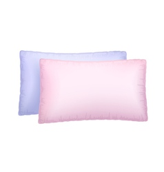 Two pillows vector image vector image