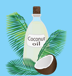 Coconut oil in a jar and coconuts vector