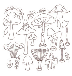 Collection hand drawn mushrooms vector