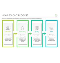 Hemp to cbd process horizontal business vector