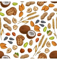 Nuts grains seeds seamless pattern vector image