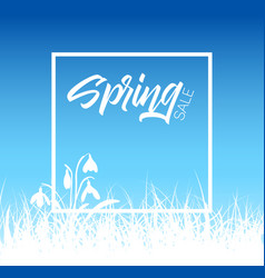 Spring grass sale background vector