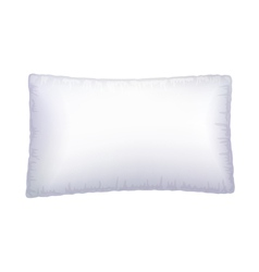 White pillow vector image