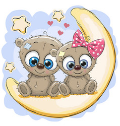 two cute bears on the moon vector image