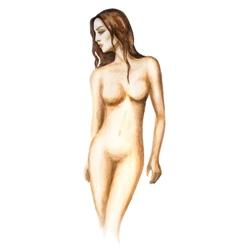 Watercolor woman vector image