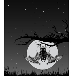 Bat is hanging on a branch in the nighttime vector image vector image