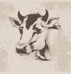 graphic ink drawing sketch the head of a cow vector image vector image