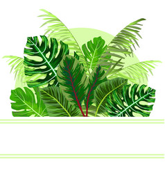 tropical jungle leaves background vector image vector image